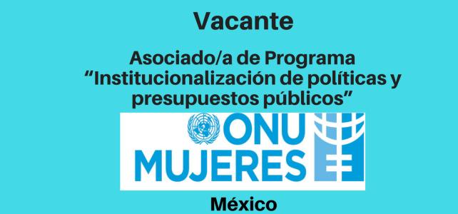 """Vacante Asociado/a de Programa """"Institucionalización de políticas y presupuestos públicos"""" con ONU Mujeres"""