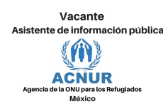 Vacante asistente de información pública ACNUR