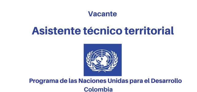 Vacante  Asistente técnico(a) territorial PNUD