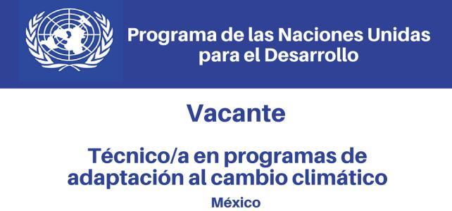 Vacante de Naciones Unidas –  Programas de Adaptación al Cambio Climático