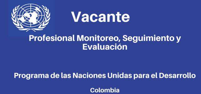 Vacante Profesional Monitoreo, Seguimiento y Evaluación PNUD