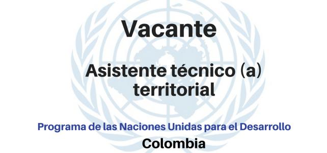 Vacante Asistente técnico(a) territorial con el PNUD
