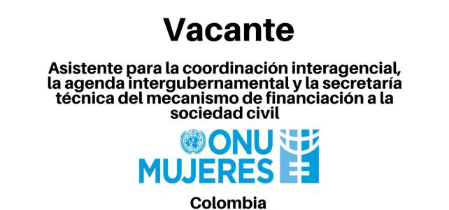 Vacante Asistente para la Coordinación Interagencial, la Agenda Intergubernamental y la Secretaría Técnica del Mecanismo de Financiación a la Sociedad Civil con ONU Mujeres