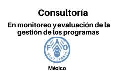 Consultoría en monitoreo y evaluación de la gestión de los programas FAO