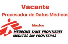 Vacante Procesador de datos médicos MSF