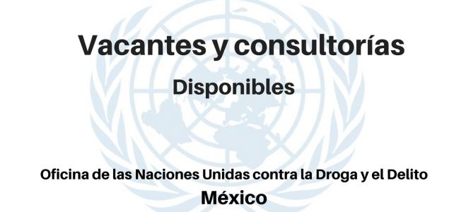 Vacantes y consultorías disponibles UNODC en America Latina.