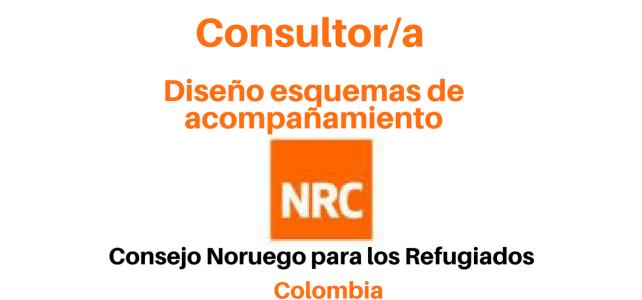 Consultoría diseño de Esquemas Especiales de Acompañamiento NRC