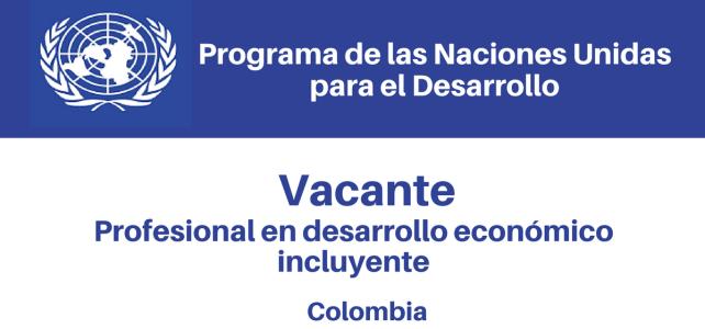 Vacante Profesional en Desarrollo Económico Incluyente PNUD