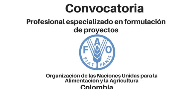 Convocatoria Profesional especializado en formulación de proyectos FAO