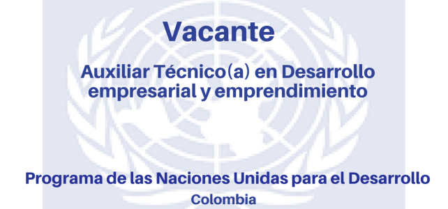 Vacante Auxiliar Técnico(a) en Desarrollo empresarial y emprendimiento PNUD