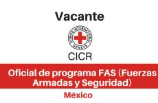 Vacante Oficial de programa FAS (Fuerzas Armadas y Seguridad) CICR
