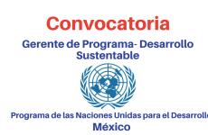 Convocatoria Gerente de Programa- Desarrollo Sustentable PNUD