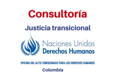 Consultoría Nacional equipo de justicia transicional Naciones Unidas Derechos Humanos