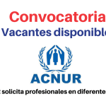 ACNUR solicita profesionales en diferentes áreas