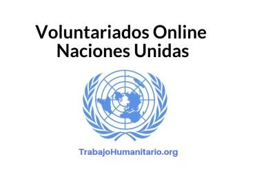 Voluntariado online Naciones Unidas