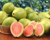 http://mundoeducacao.bol.uol.com.br/upload/conteudo/guava.jpg