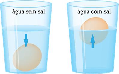 Resultado de imagem para ovo flutua com sal