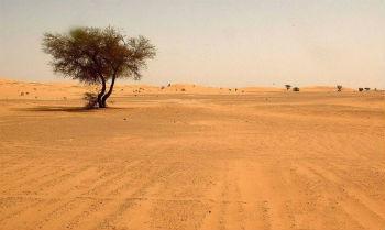 Imagem do deserto do Saara