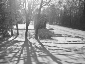 Shadows on snow — copyright Trace Meek