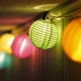 Happy Lunar New Year — copyright Trace Meek