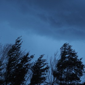 A blustery evening sky — copyright Trace Meek