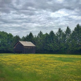 Hatfield barn — copyright Trace Meek