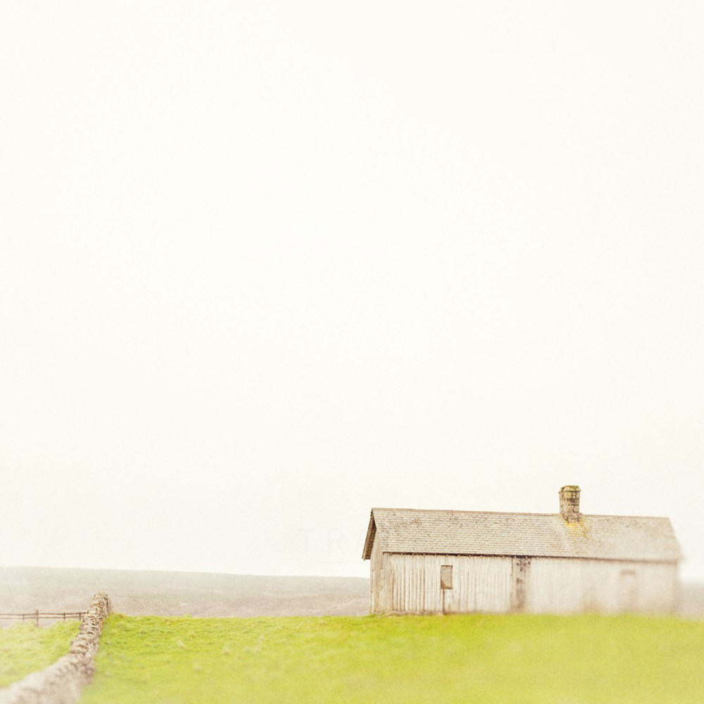 An abandoned shack along a country road in the Highlands of Scotland by Tracey Capone