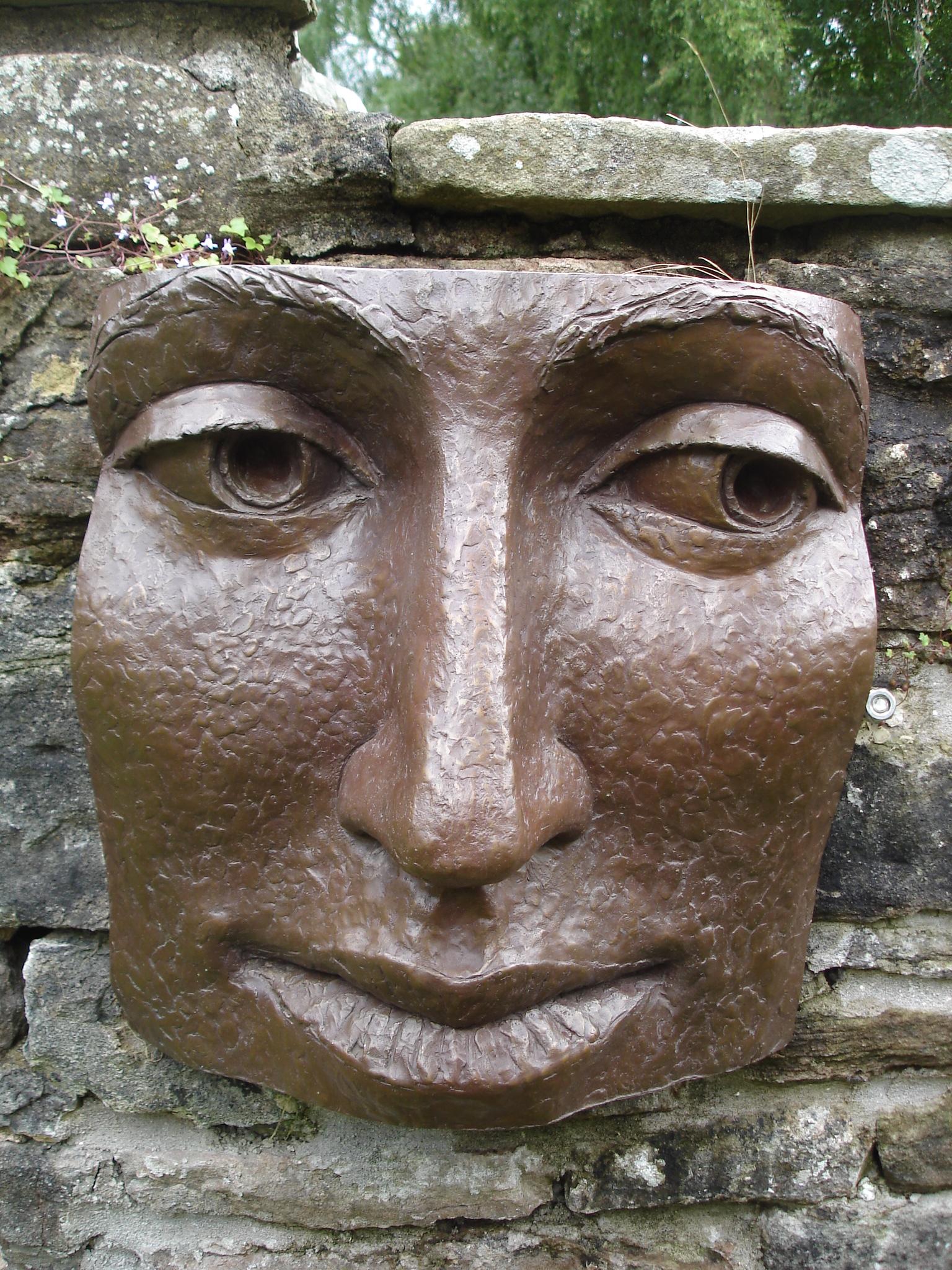 Bronze Face by Diane Gorvin