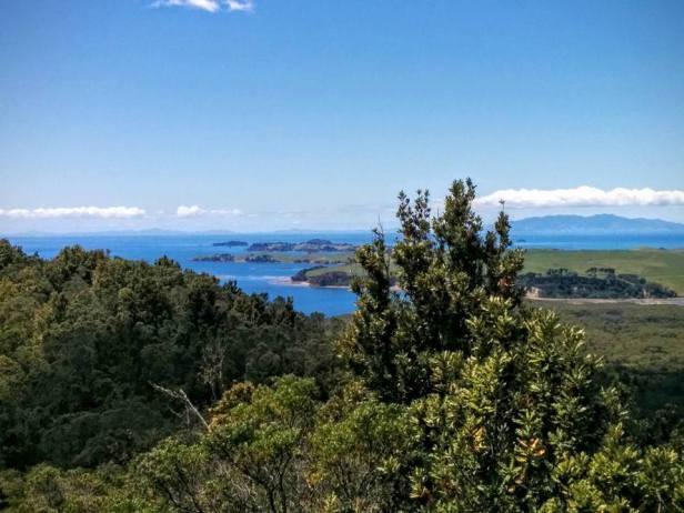 Rangitoto Island!