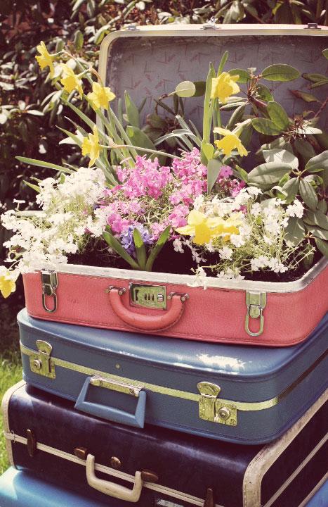 Vintage suitcase planter,old suitcase planter, antique suitcase planter,recycle old suitcase,recycle old suitcase