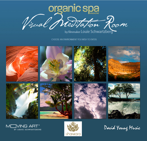 Organic Spa Visual Meditation Room
