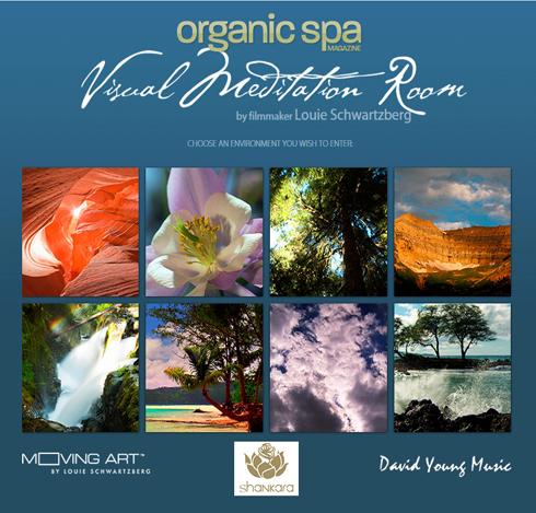 Organic Spa Visual Meditation Room