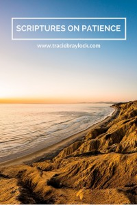 Scriptures on Patience | Tracie Braylock