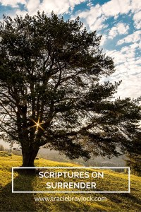 Scriptures on Surrender | Tracie Braylock