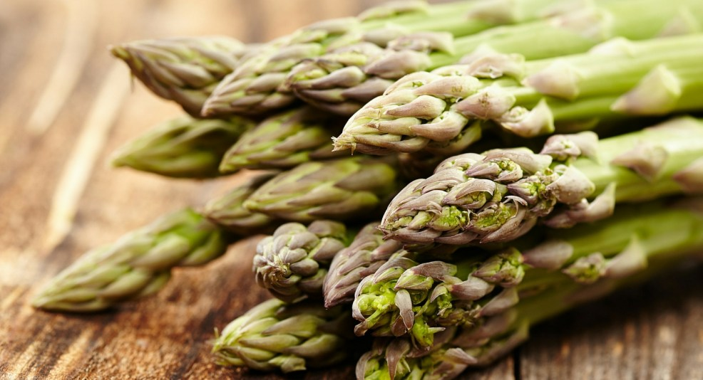 Asparagus   Tracie Braylock