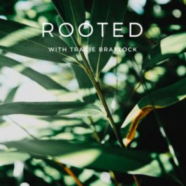 Rooted Kit | Tracie Braylock