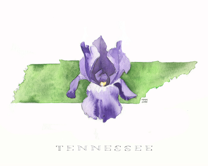 "Three-Part: ""Tennessee Series"""
