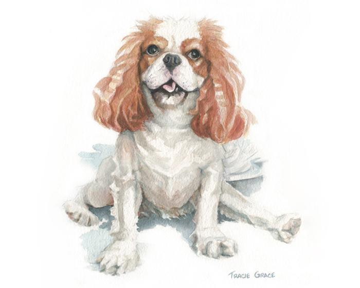 Dog Portrait – Bonnie