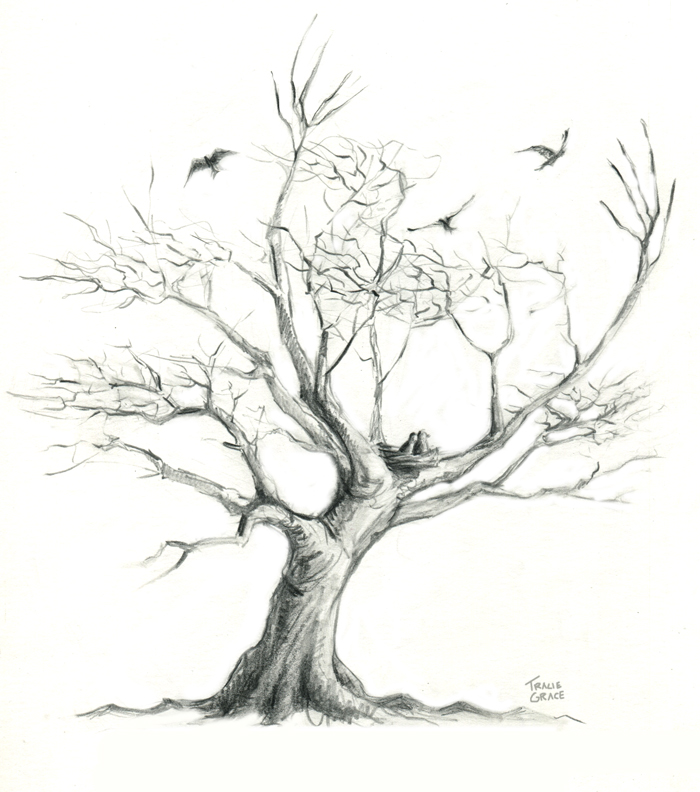 Tree Tattoo (web - drawing only)