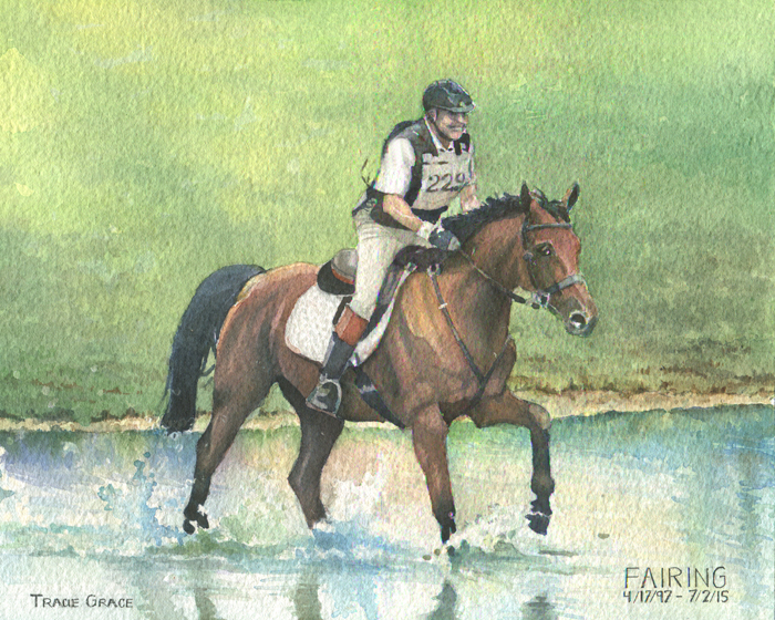 Horse 'Fairing' (web)