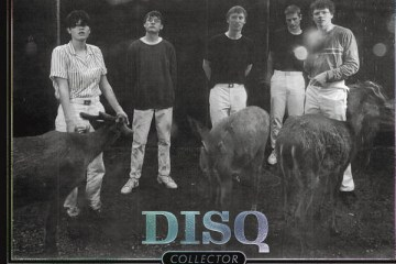 disq collector