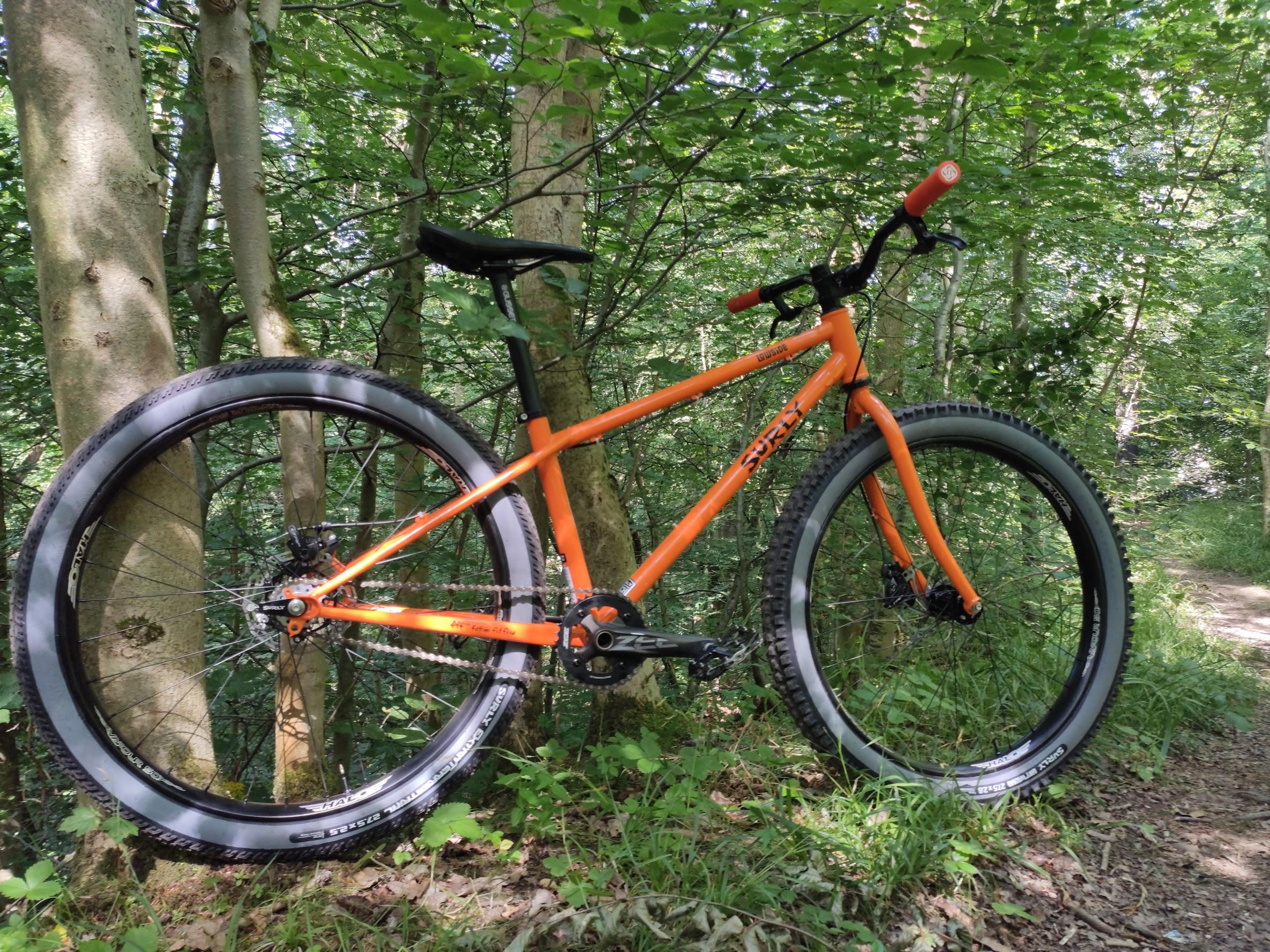 surly lowside single speed mountain bike