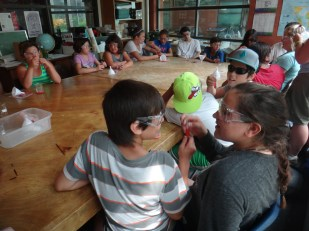 Curve Lake kids hearing the teachings of strawberry and extracting DNA