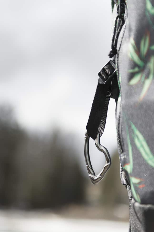 svorn arcus carabiner review