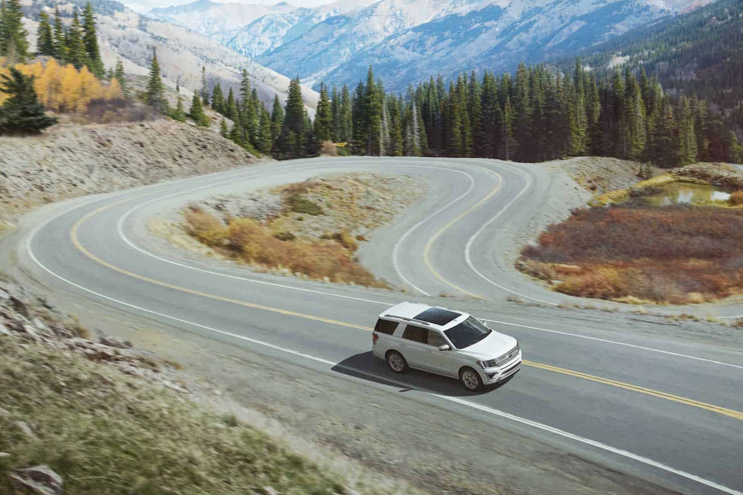 2018 ford expedition rolling topview