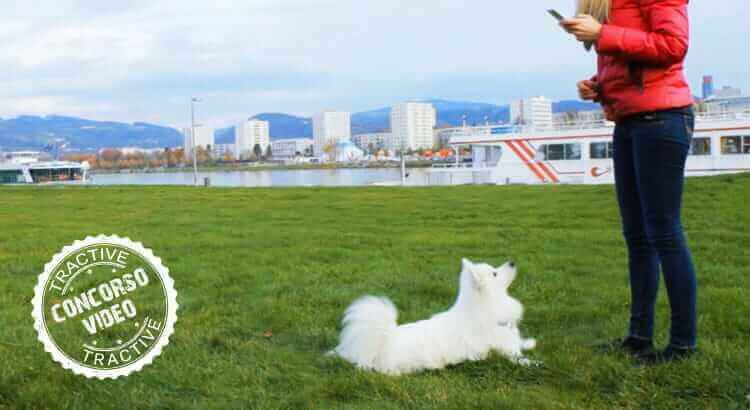 Concorso video: vinci Pet-Remote