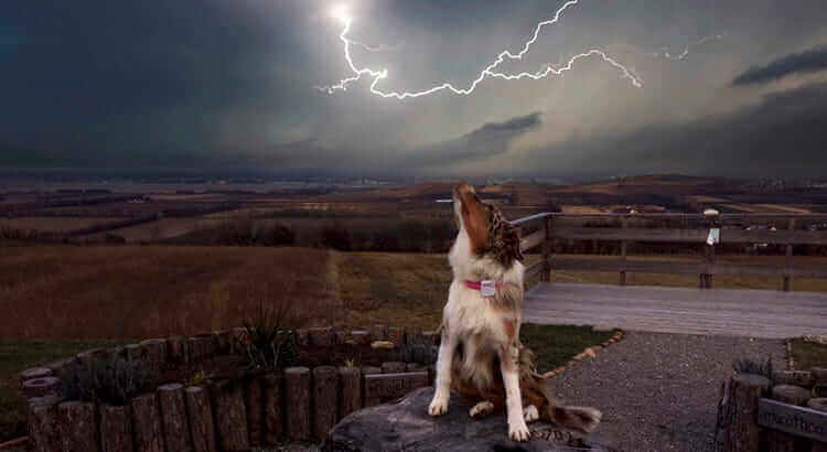 frightened during a storm