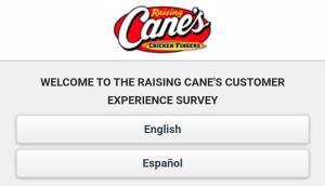 Raising Cane's survey.