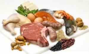 Science Nutshell protein sources