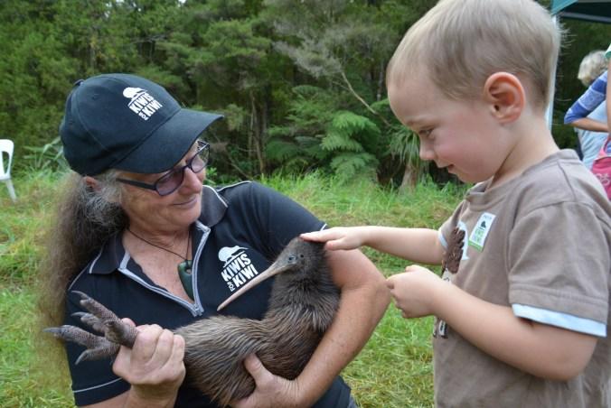 Kiwis for kiwi